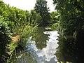 River Lee at Mill Green - geograph.org.uk - 1317636.jpg