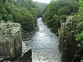 River Tees from High Force - geograph.org.uk - 1501892.jpg