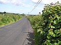 Road at Craigtown - geograph.org.uk - 1359680.jpg