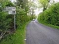 Road at Mulnagoad - geograph.org.uk - 449695.jpg