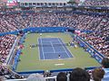 Rogers Cup Djokovic vs Tomic26.JPG