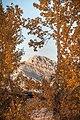 Ross Peak in Bozeman, MT.jpg