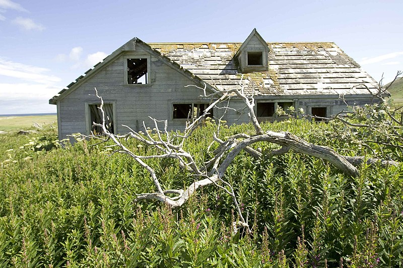 File:Rotten trunk in front of an old house overgrown with grass.jpg