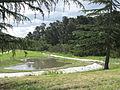 Ruffey Creek and Wetlands.JPG