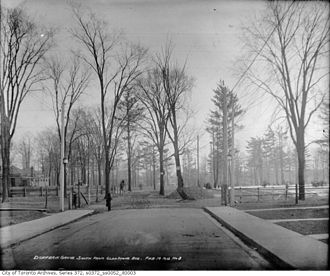 Dufferin Grove - Dufferin Grove looking south from Havelock Avenue, 1913.