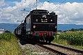 SNCF 241-A-65 (35-C-41) - Verein 241-4-65 (28714228402).jpg
