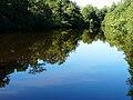 Saint-Jory-de-Chalais étang du Grenier.JPG