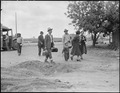 Salinas, California. Evacuees of Japanese ancestry arriving at this assembly center. They will lat . . . - NARA - 536184.tif
