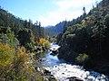 Salmon River Nov ember 2010 (5269735776).jpg