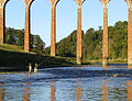 Salmon fishing on the River Tweed - geograph.org.uk - 586937.jpg