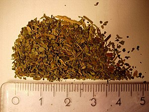Salvia divinorum drug
