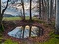 Sanspareil Wasserloch 1274408.jpg