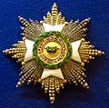 Saxe-Ernestine House Order grand cross star (Saxe-Altenburg 1860) - Tallinn Museum of Orders.jpg