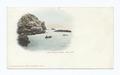 Seal Rocks, Santa Catalina Island, Calif (NYPL b12647398-62021).tiff