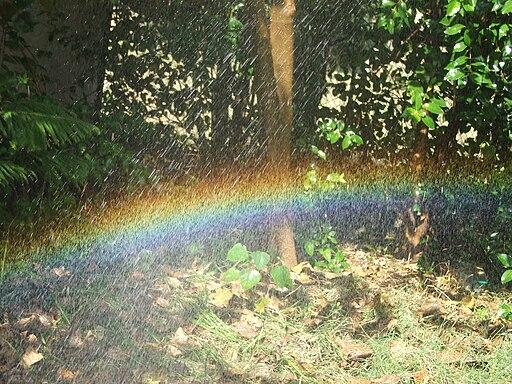 Self Made Rainbow