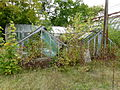 Serres abandonnées - Jardin Agronomique Tropical 3.JPG
