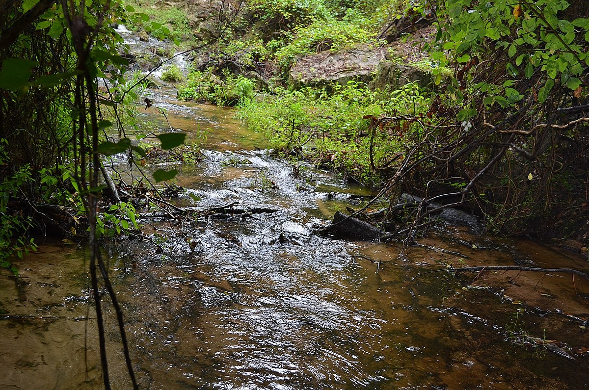 Poinsett State Park Wikipedia