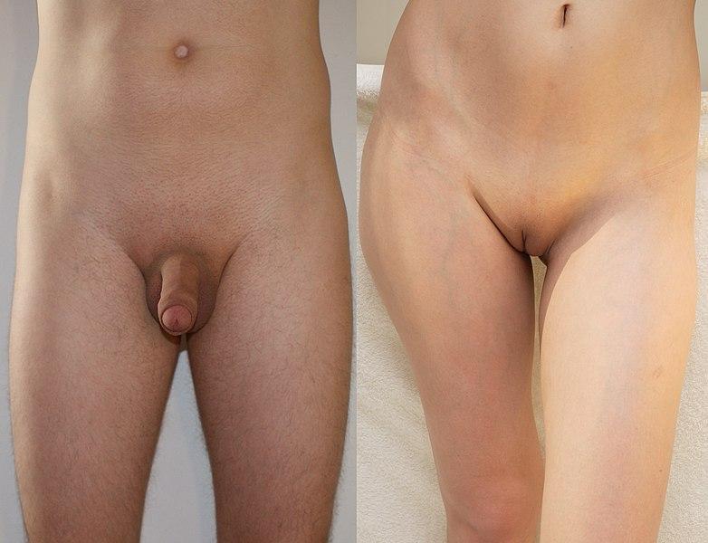 Pflegerin Riesenpimmel Sexmaschine Kondomsex