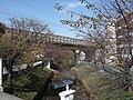 Shibukawa bridge 02.jpg