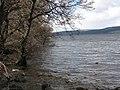 Shore of Loch Rannoch - geograph.org.uk - 155121.jpg