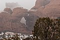 Shrouded Double Arch (8581023900).jpg
