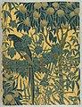 Sidewall, Macaw, 1908 (CH 18562395-2).jpg