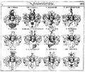 Siebmacher 1701-1705 E183.jpg