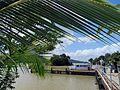 Smithsonian Dock at Gamboa - Flickr - treegrow.jpg