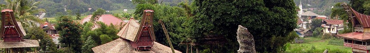 Southern Sulawesi banner.jpg
