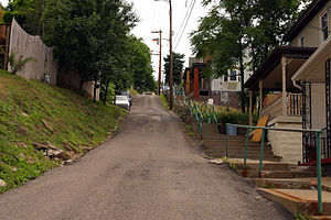 South Side Slopes, Pittsburgh - One of the many steep streets in the South Side Slopes, with a staircase for a sidewalk.