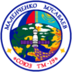 Soyuz TM-19 patch.png