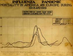 Mortalidad por semana de París, Berlín, Londres y Nueva York. El pico es atribuible a la gripe
