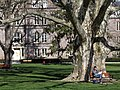 Springtime at Vassar College - Poughkeepsie - New York - USA (6932501866).jpg