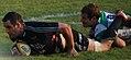 Stadio Zaffanella , Aironi vs Treviso - panoramio (2).jpg