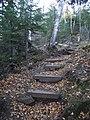 Stairs on trail (5057574302).jpg