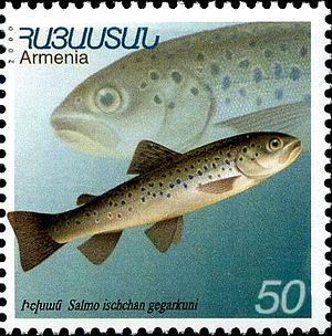 Sevan trout - Image: Stamp of Armenia m 176