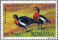 Stamps of Romania, 2007-058.jpg