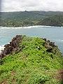 Starr-050405-5775-Solanum americanum-habit-Alau-Maui (24741313985).jpg