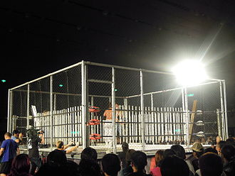 Big Japan Pro Wrestling - Image: Steel cage deathmatch with 200 fluorescent light tubes Ryuji Ito vs. Yuko Miyamoto Big Japan Pro Wrestling May 4, 2010