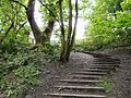 Steps out of Gower Hey Wood - geograph.org.uk - 1317178.jpg