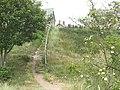Steps to Riverside Road - geograph.org.uk - 1423696.jpg