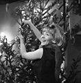 Stevan Kragujevic, Milena Dravic, Dugme za peti sprat, novogdisnja Tv emisija 1963.jpg