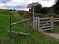 Stile and gate, Hambledon Hill - geograph.org.uk - 646204.jpg