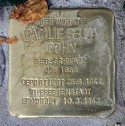 Photo of Cäcilie Selma Cohn brass plaque