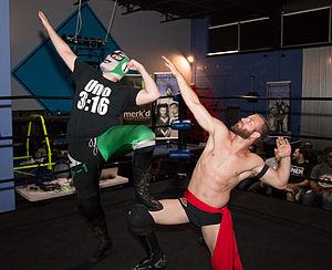 Stupefied - The Super Smash Bros. - Player Uno (left in mask) and Stu Dos performing their signature in-ring pose.