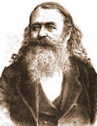 Politics of Vojvodina - Svetozar Miletić (1826-1901), political leader of Serbs in Vojvodina
