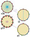 Symmetries of tridecagon.png