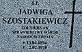 Szostakiewicz1.jpg