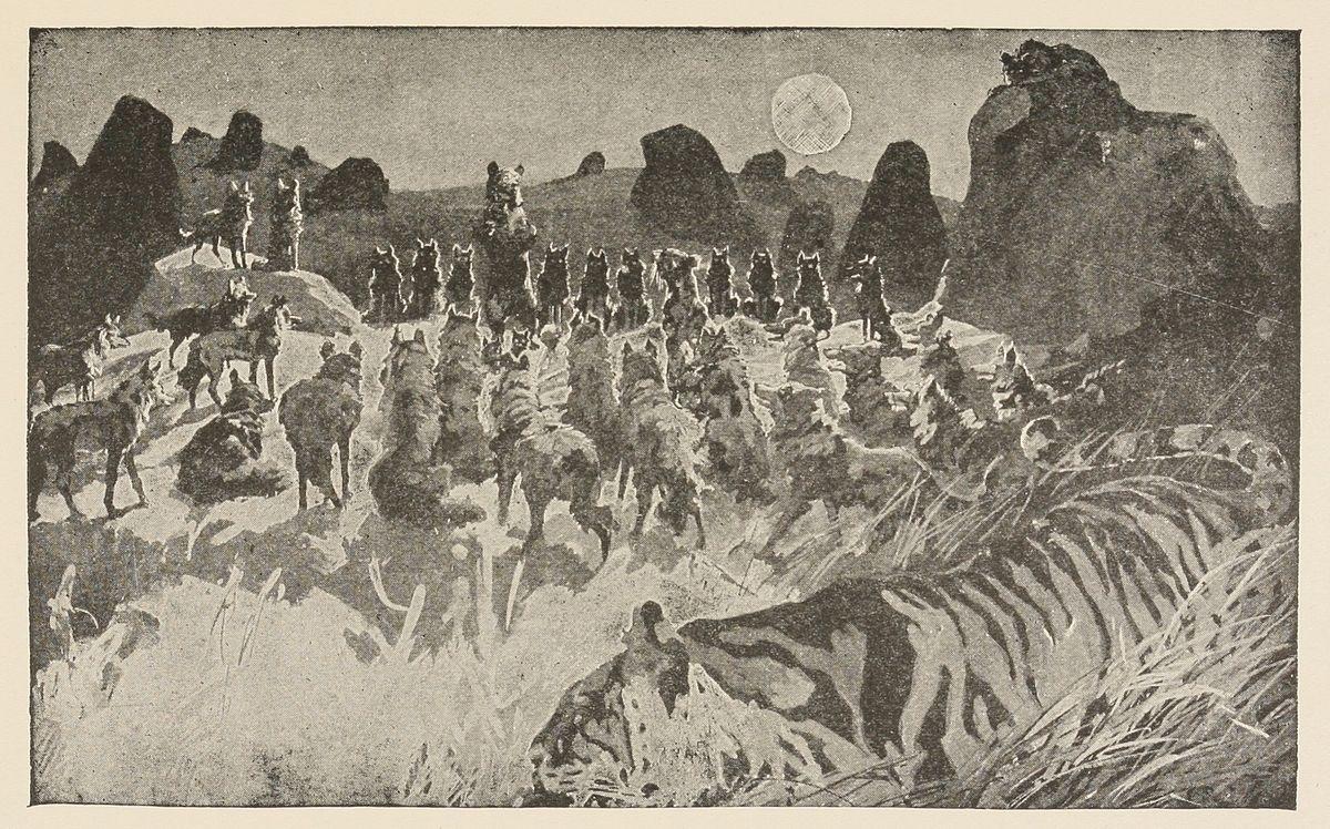I fratelli di Mowgli - Wikipedia