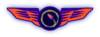 TWA badge 6.png
